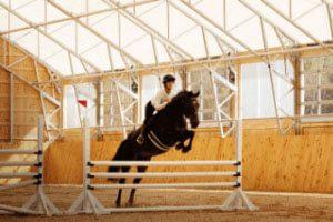 image_industries_agriculture-equestrian-oc90w7ezeahrqk30hegk5ux3t5mv30eoi0xxnbrob4